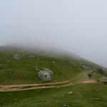 Muita neblina