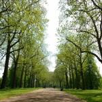 Hyde Park | Londres